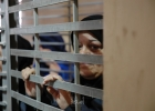 مركز فلسطين: سلطات الاحتلال اعتقلت (16 ألف) امرأة منذ عام 67