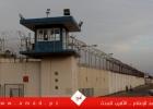 مفوضية الأسرى : الأسيرة نسرين أبو كميل تتنسم يوم الأحد الحرية بعد اعتقال دام (6) سنوات