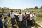 سلفيت: مستوطنون يحطمون غرفة زراعية في كفر الديك