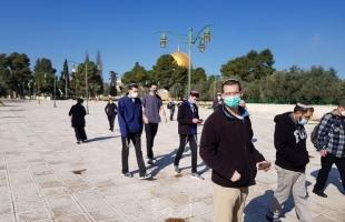 """القدس: (69) مستوطناً يقتحمون ساحات """"الأقصى"""" بحراسة مشددة"""